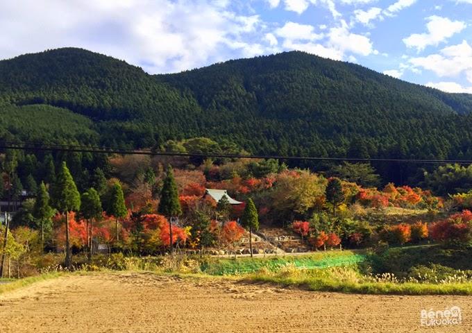 Couleurs d'automne dans la campgane japonaise