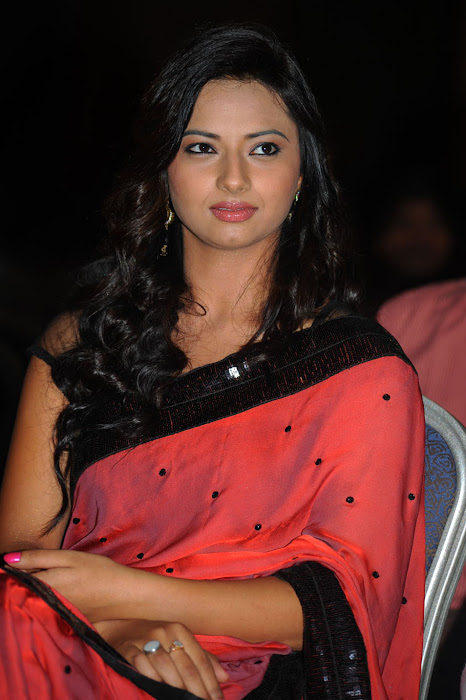 isha chawla at poola rangadu audio launch, isha chawla saree unseen pics