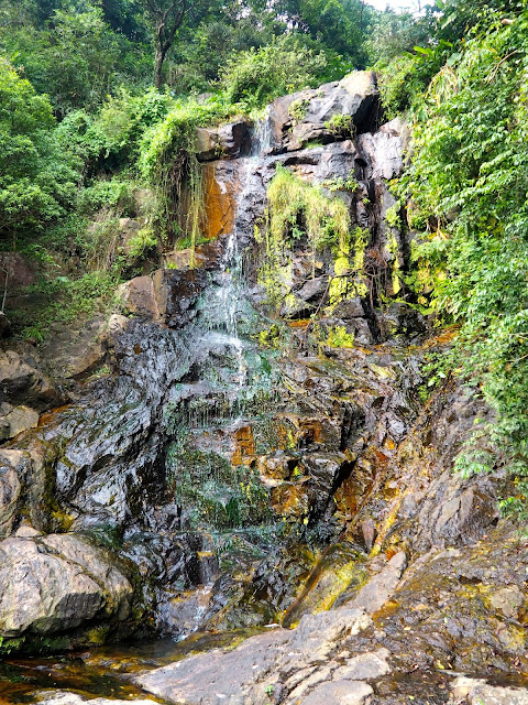 Small waterfall beside the trail on the Peak Circle Walk | Hong Kong