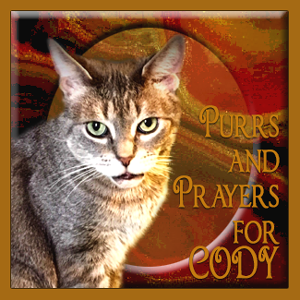 Purrs and Prayers Needed
