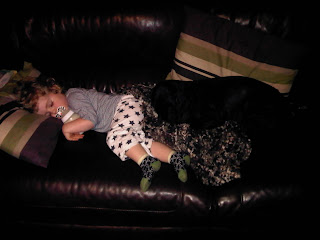 Sleeping toddler and cocker spaniel
