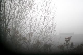 Brouillard de neige - Berlin