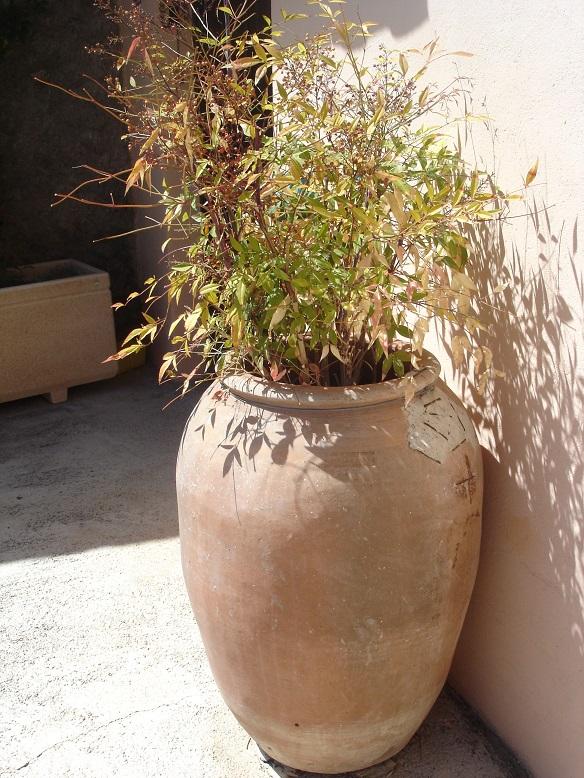 El jard n en macetas macetones tinajas y otros for Tinajas de barro para jardin