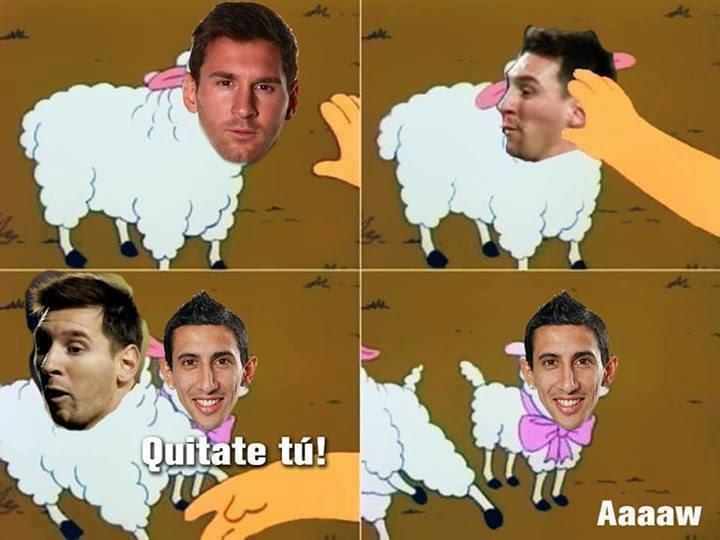 Que lindas ovejitas