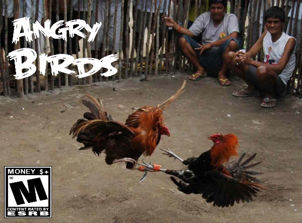 angry birds gallos