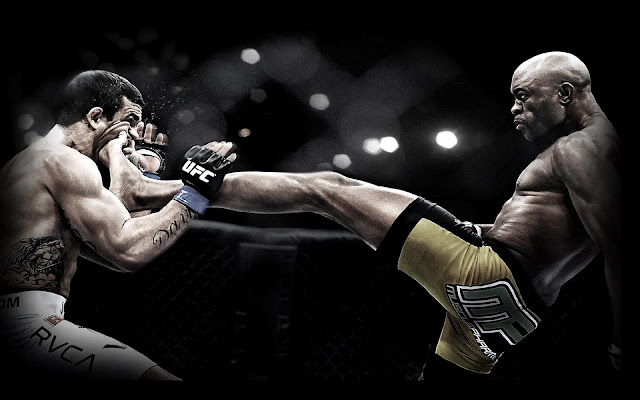 ufc mma fighter anderson silva the spider picture image