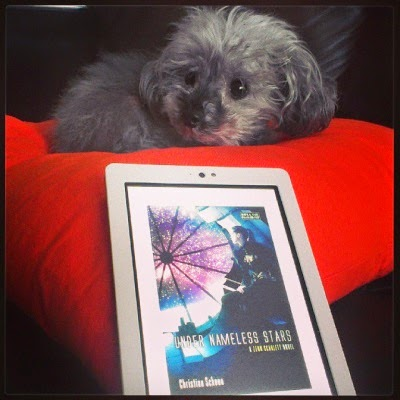 A fuzzy grey poodle, Murchie, lays on a bright orange pillow. In front of him sits a white Kobo with Under Nameless Stars's cover on its screen. The cover depicts a pale-skinned, leather-clad girl seated before a window onto purple-tinged space.