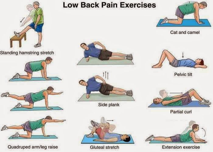 ... below pictures of exercises that helps reduce waist pain helps. Enjoy