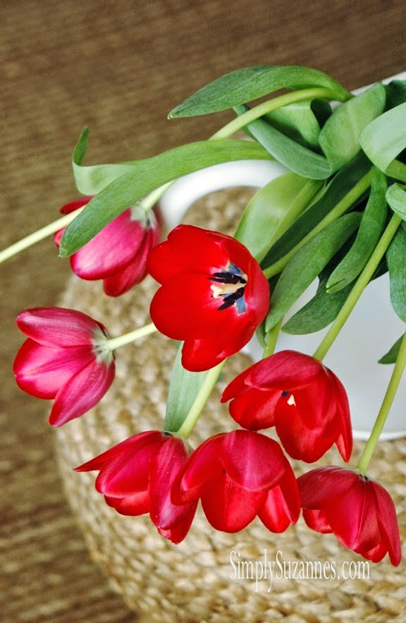 Lovely red tulips for summer!