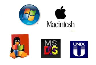the role and examples of operating systems Examples of operating systems include microsoft windows on a personal computer and google's android on a mobile phone examples of application software are microsoft excel and angry birds to get a full appreciation of the role information systems play.