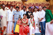 Amala Paul Al Vijay wedding Photos-thumbnail-29