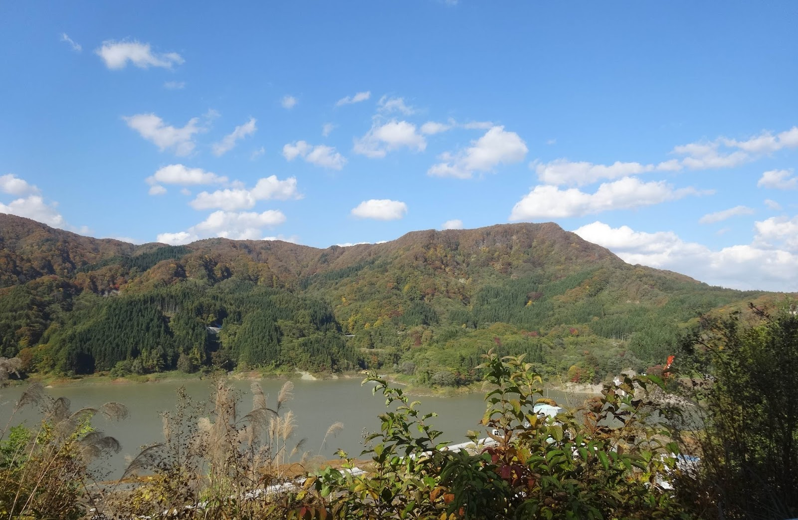 山,森林,湖,津軽ダム〈著作権フリー画像〉Free Stock Photos