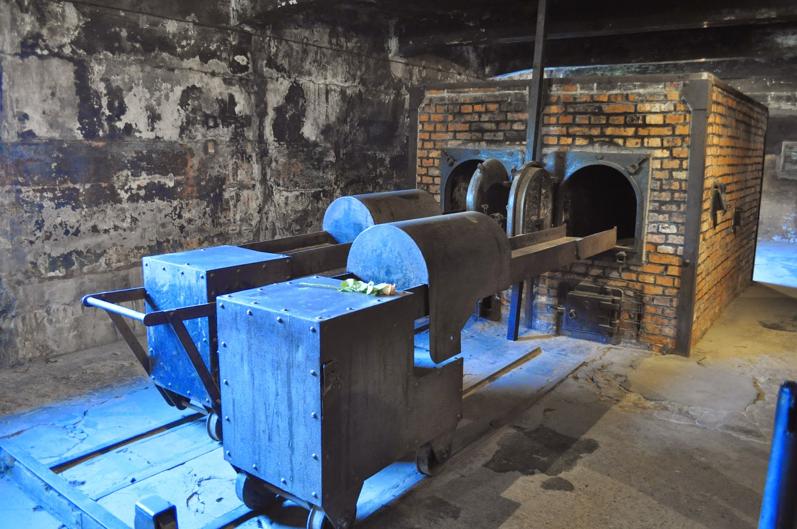 Rondelles et sacoches: Auschwitz, une visite marquante