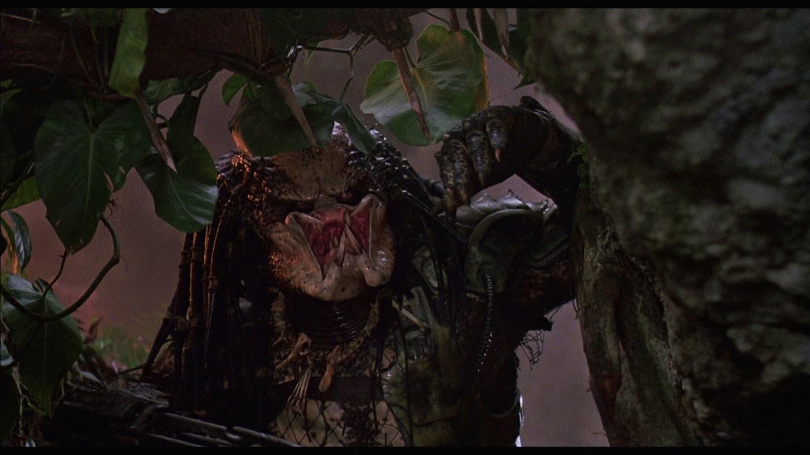 木の陰からこちらをうかがうプレデター