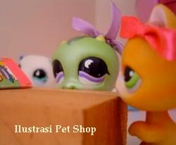 usaha pet shop