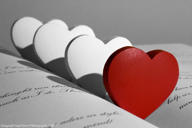 حوار بين الحب والحزن 090227170856f4GF