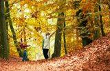 Ferienpark Angebote Herbstferien