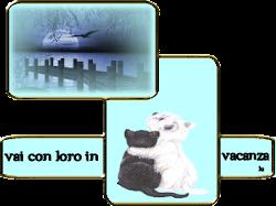 Campagna contro l'abbandono di cani e gatti!