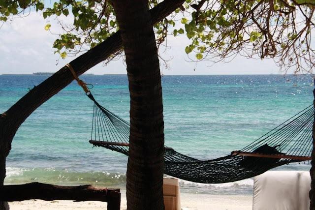 Hamaca en playa - Vivanta by Taj Coral Reef Maldivas