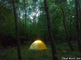 glowing tent at night, exposure, stars, forest, dark