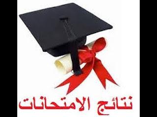 Bac results Algeria middle school education