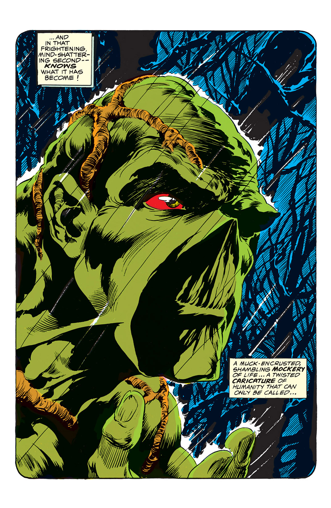 Swamp Thing (1972) Issue #1 #1 - English 16