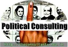 Political Consultant