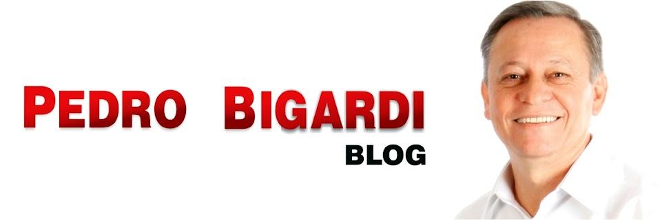 PEDRO BIGARDI (Deputado Estadual)