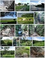 Fotos georreferenciadas