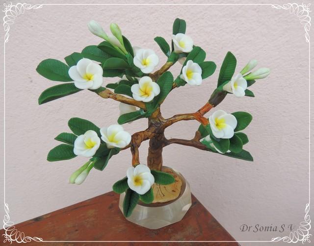 Clay Frangipani Bonsai Tree