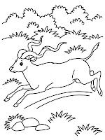 Antelope Running Kids Animal Printable Coloring Pages