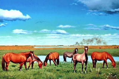 paisaje-argentino