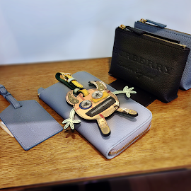 Burberry Creature Appliqué Leather Trim Luggage Tag & cases.