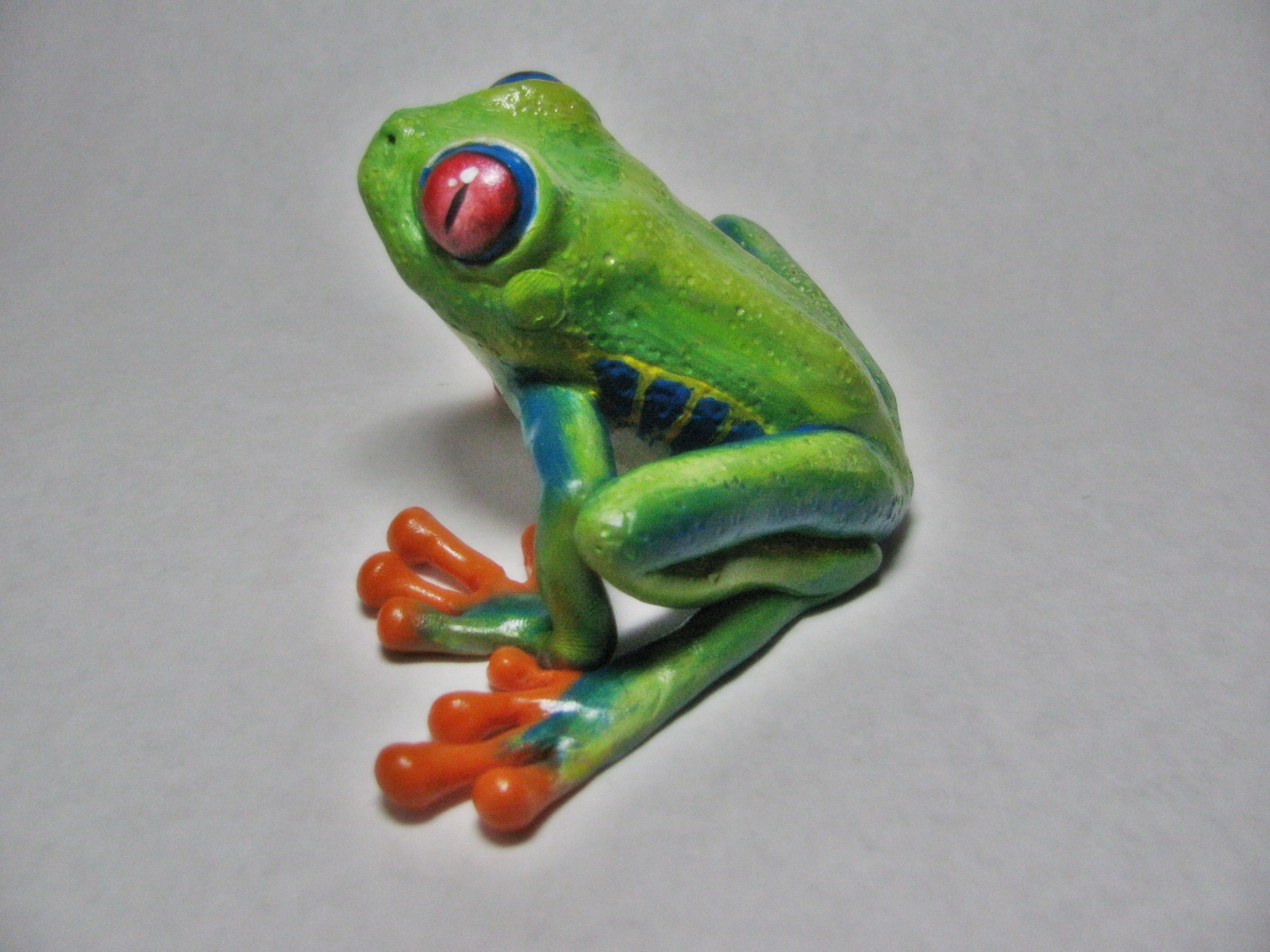 Arlissa Green Creations: Red-eyed Tree Frog