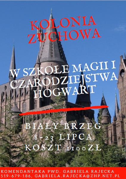 Kolonia zuchowa 2017