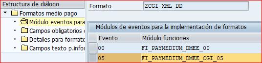 Función FI_PAYMEDIUM_DMEE_CGI_05 en formato SEPA DD
