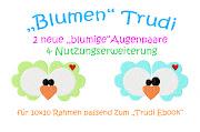 ♥Neue Augen für Trudilein ♥ zus. zum Ebook