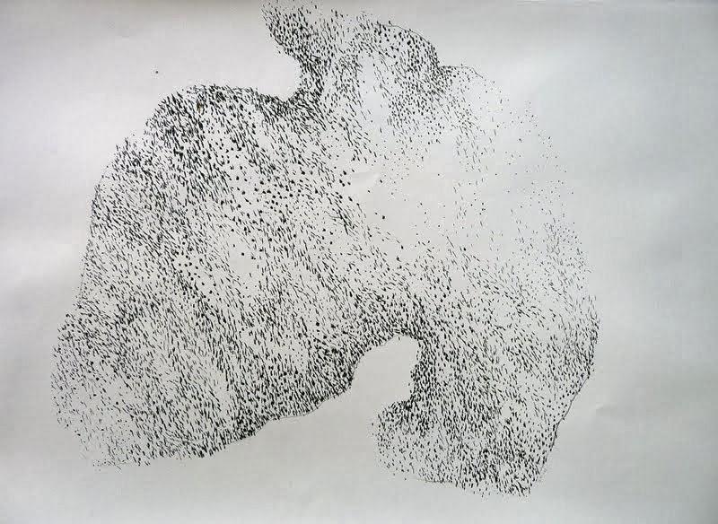 fusain / papier 65 x 50 2013