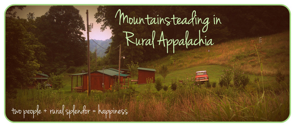 mountainsteading in rural appalachia