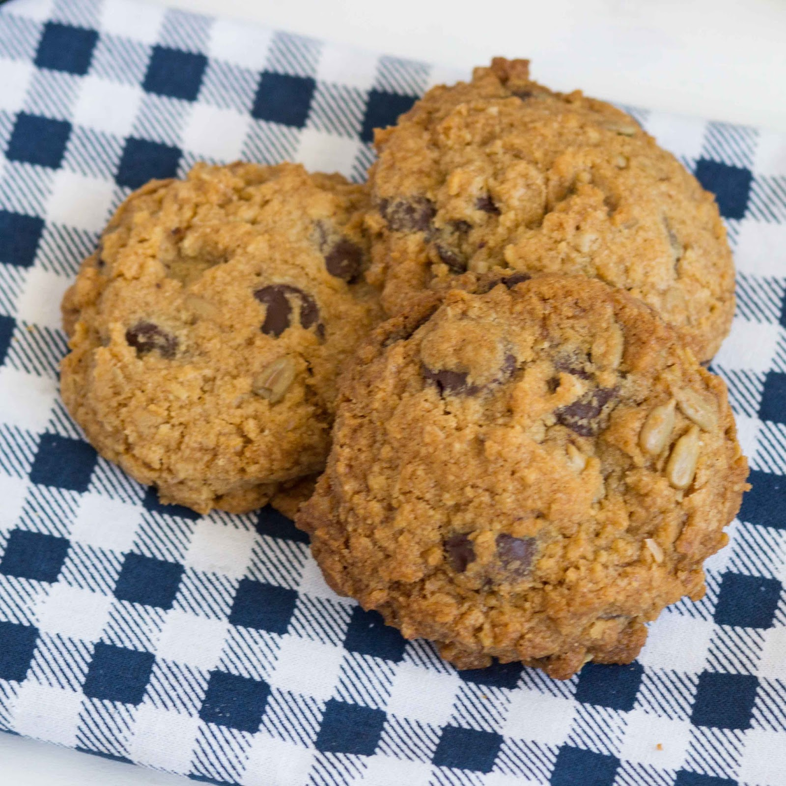 ... : Egg-Free, Nut-Free Oatmeal Chocolate Chip Sunflower Seed Cookies