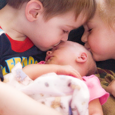 Babies Kissing and loving Photo