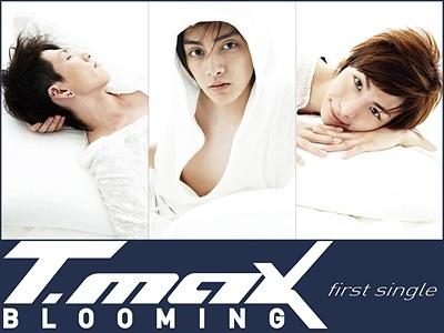 T-Max Boyband Korea Paling Populer