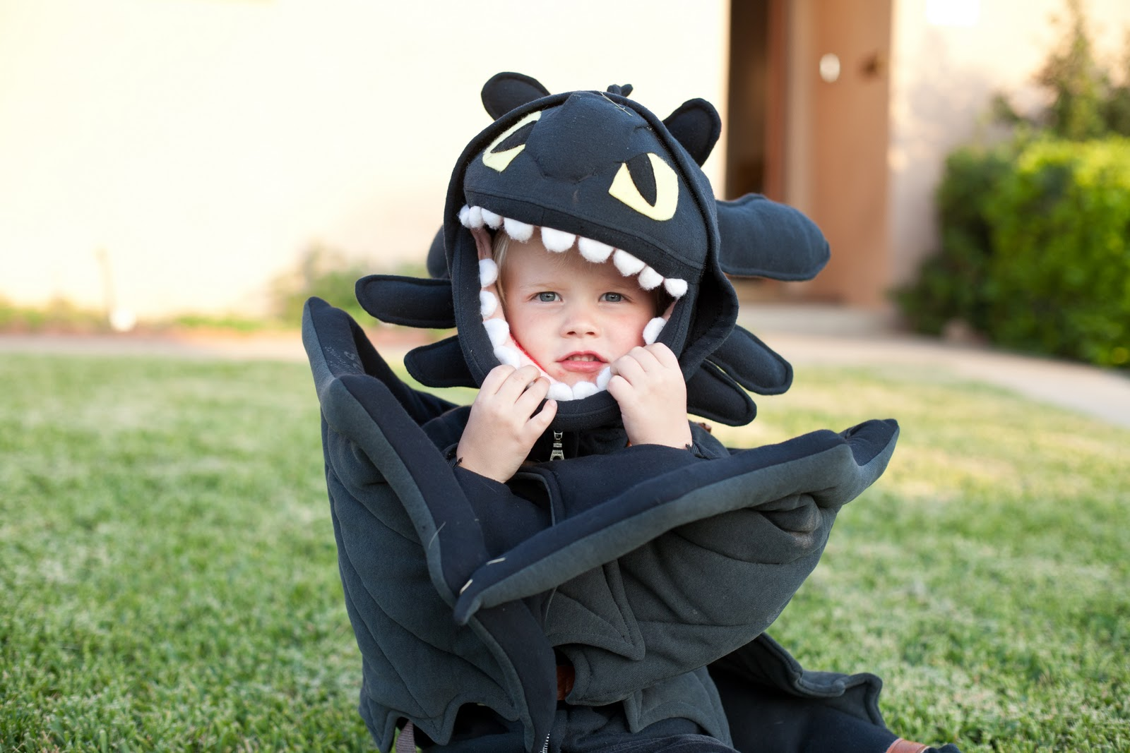 Toothless Halloween Costume Pattern