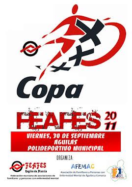 CARTEL DE LA COPA 2011