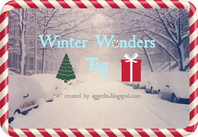 Winter Wonders Tag