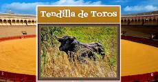 TENDILLA DE TOROS