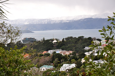 Snow on the Rimutaka Ranges