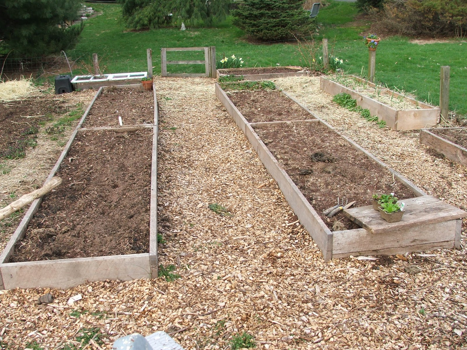 Covering Raised Beds With Black Plastic