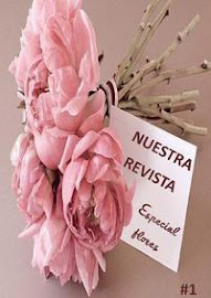 Reivsta digital Nuestra Revista