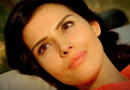 مسلسل السيدة ديلا مدبلج للعربية